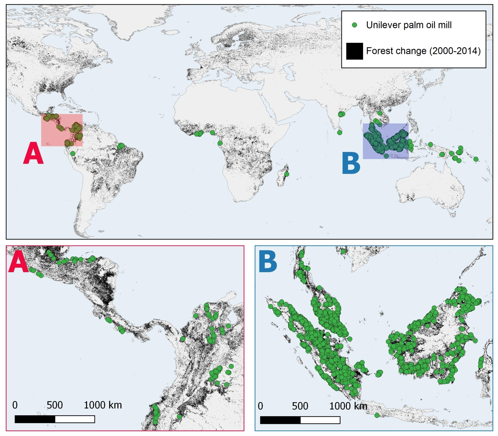 Forest change global overview