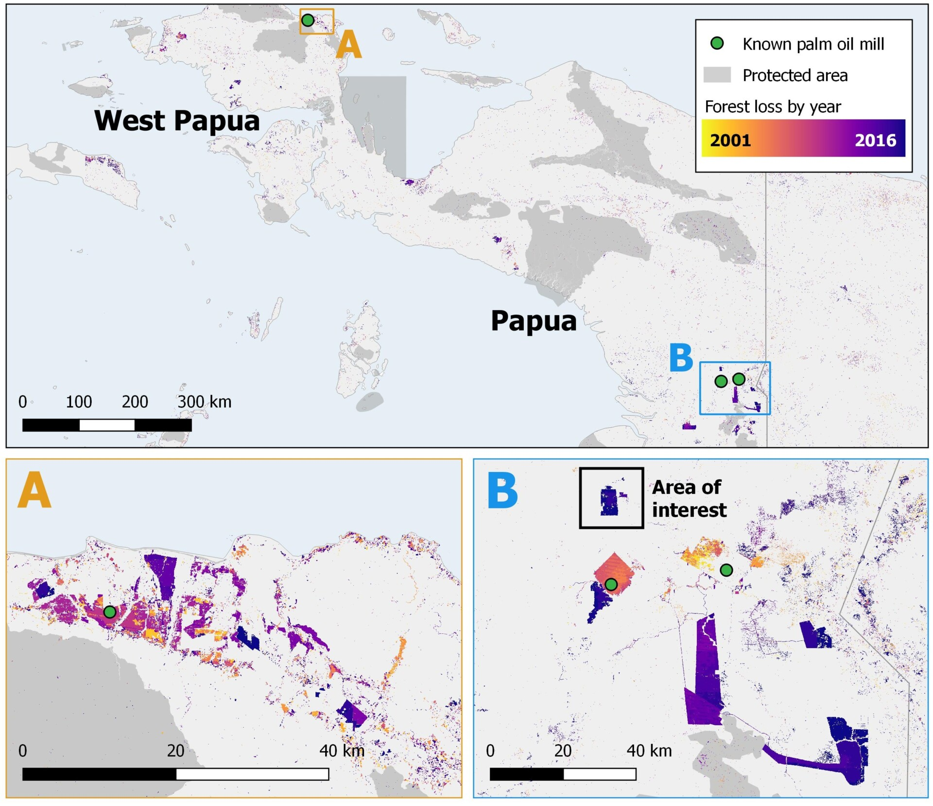 Forest change in Papua