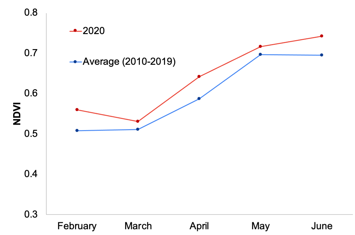 NDVI monthly averages - 2020 vs historical averages (2010-2019)